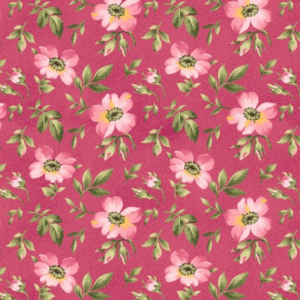 Wild Rose Flannel blooms pink
