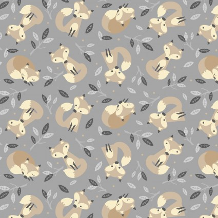 Little Critters - 4294-MU - Gray Foxes