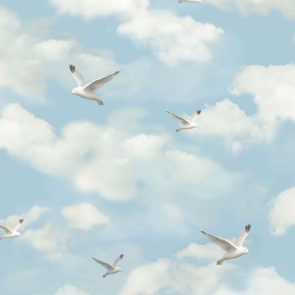 By the Peaceful Shore Seagulls