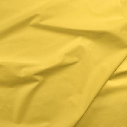 007 Painter's Palette Maize