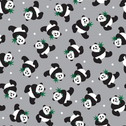 Little Explorers- Pandas on grey