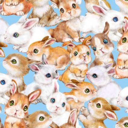 Bunny Meadows
