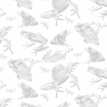 Jewels of the Jungle - Tonal Frog on White 5559-9