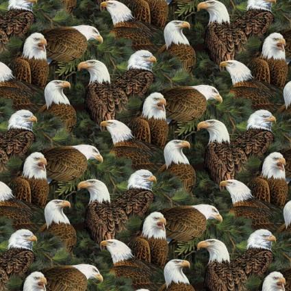Flying High Eagle Heads SPR 65171