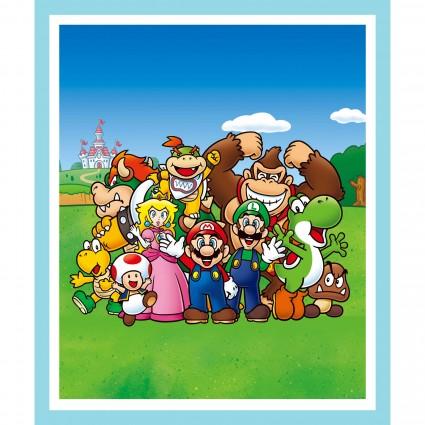 Super Mario Bros. - Mario & Friends Panel
