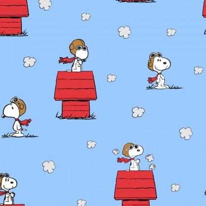 Peanuts on Dog House
