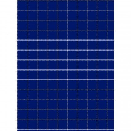 GIFT- Towel Blue and White Plaid
