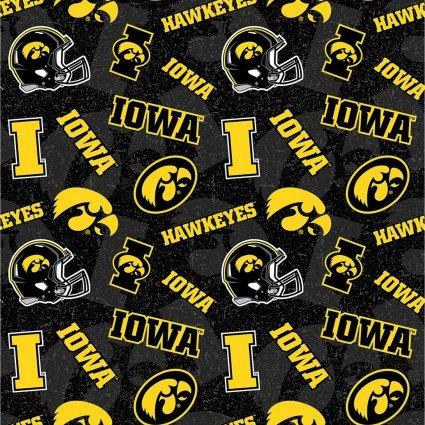 University of Iowa 1178