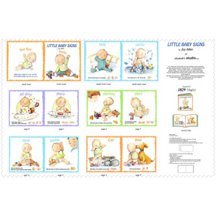 Little Baby Signs Book