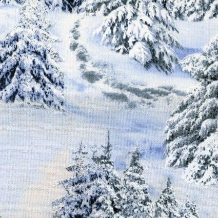 Snow Landscape Medley