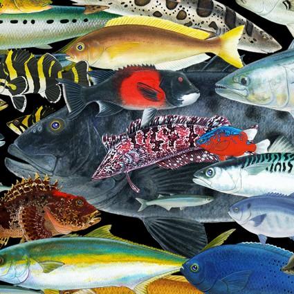 Catalina Island Colored Fish 8201Black