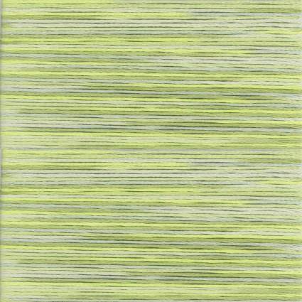 5013 Cosmo Seasons Variegated Floss Green