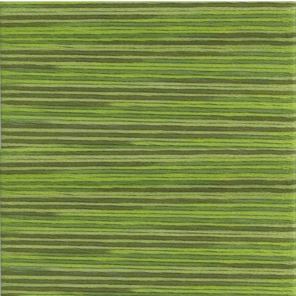 5014 Cosmo Seasons Variegated Floss Green