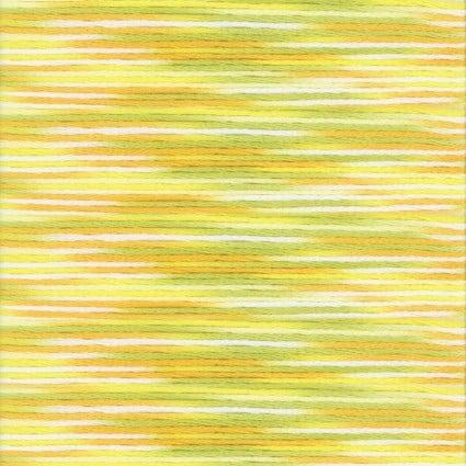Cosmo Seasons: 9004 Variegated Floss