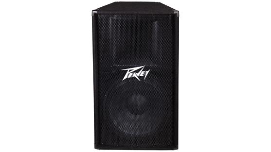 Peavey PV115 speaker enclosure