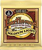 Earthwood Med Light Acoustic Stringset Ernie Ball 2003EB