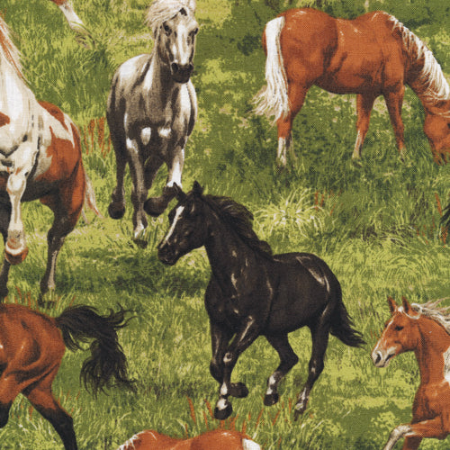Run Free Horses in Grass