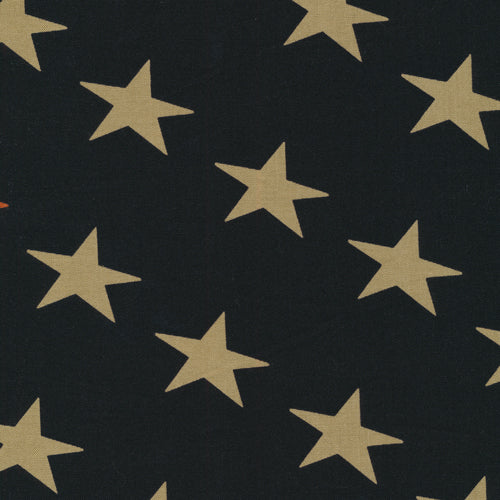 Defenders of Freedom Stars