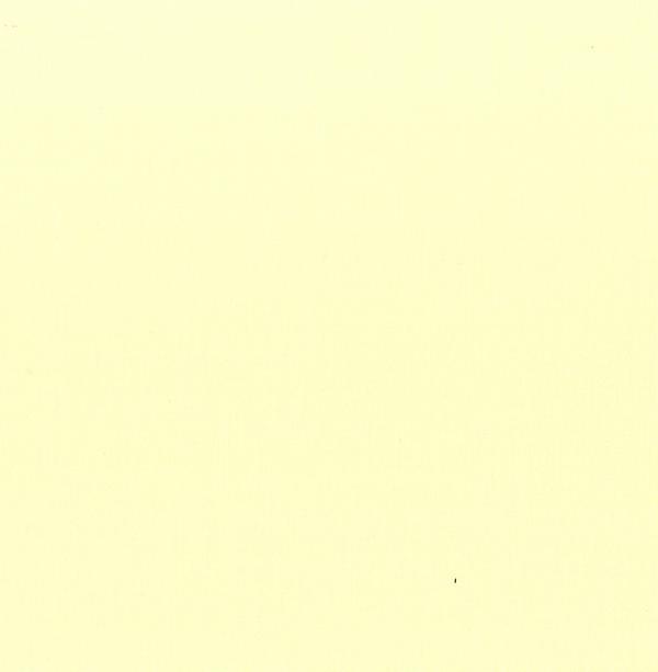 Painters Palette 121-082 Flan