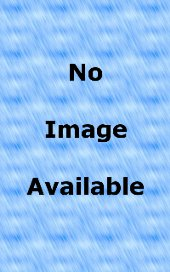 Fender Logo Hoodie Black