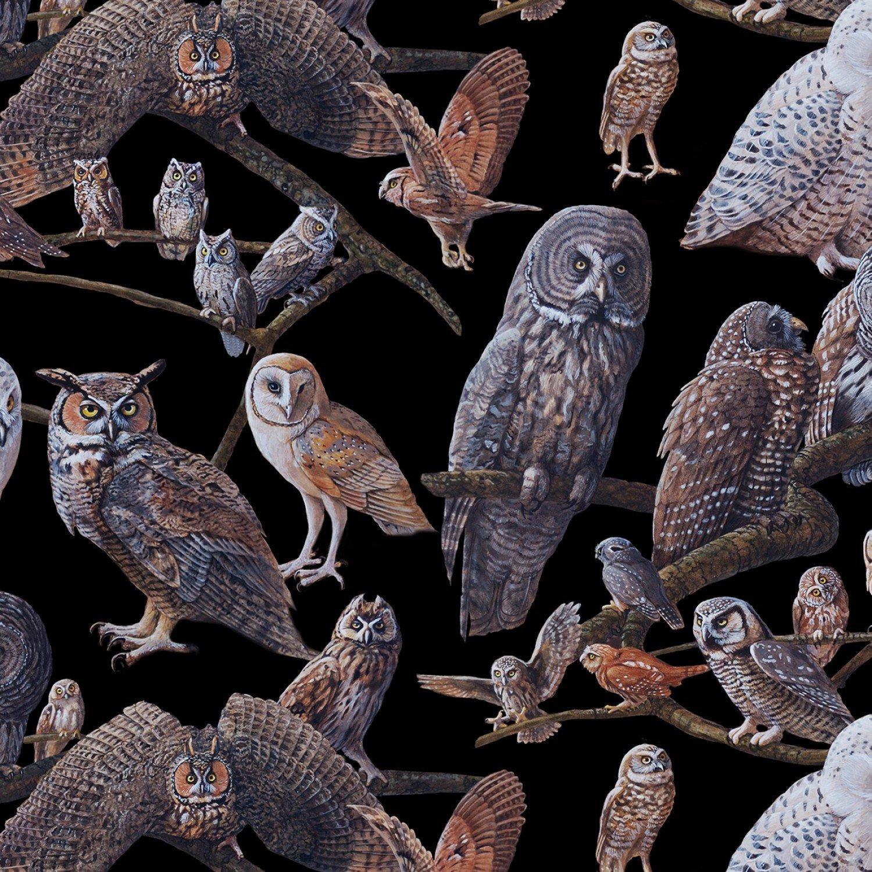 Elizabeth Studio -16003 Black -Owls of North America Owl Fabric