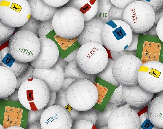 216 Volleyball - White NSKU-7166