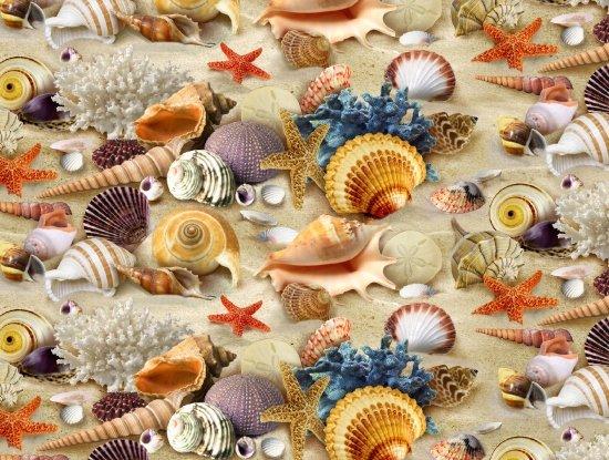 Landscape Medley 278 Sand Seashell
