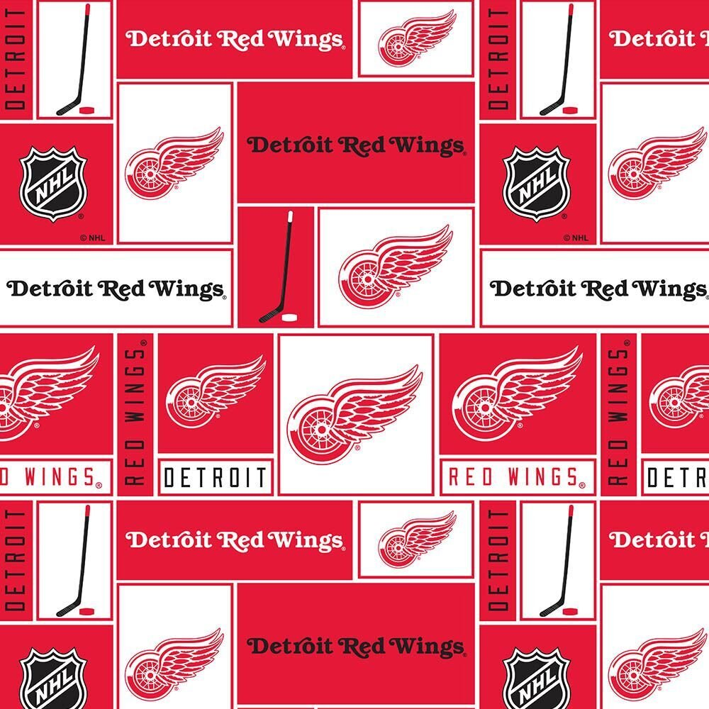 Detroit Red Wings 840 WIN