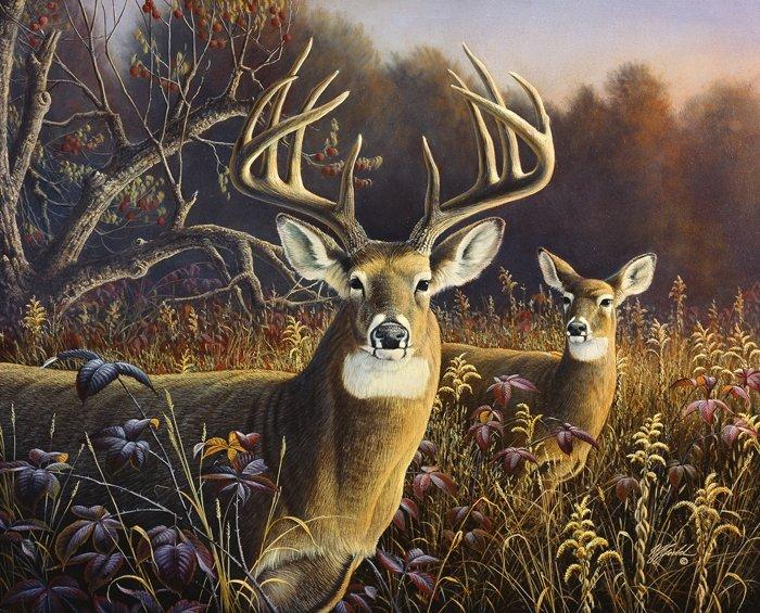 Deer in the Grassland 36 x 44 Panel