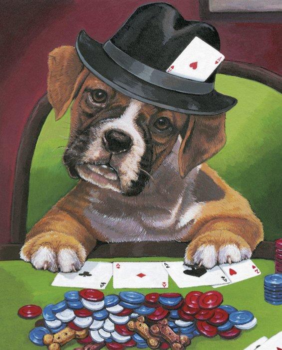 Boxer Poker Player 34 Panel David Textiles exclusive Digital Print