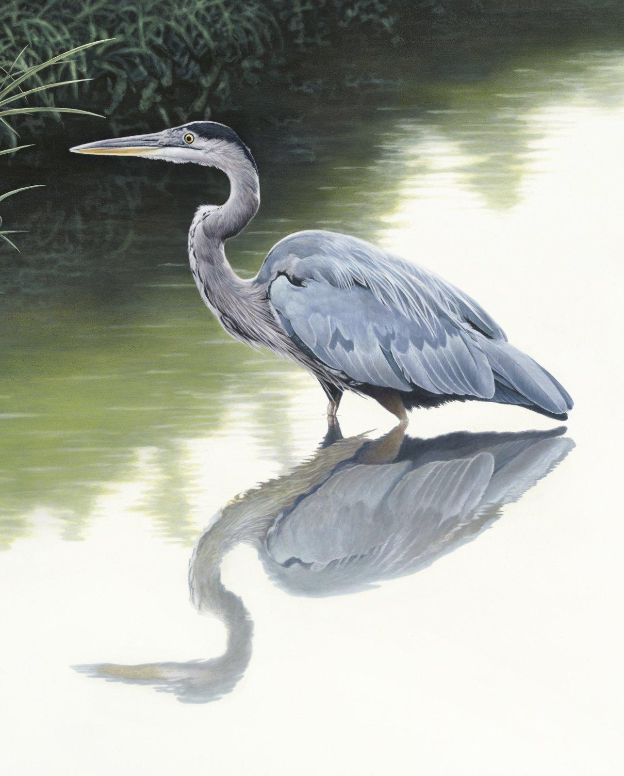 Beauty of Blue Heron 36 Panel DT-Exclusive Digital Prints AL-3852-1