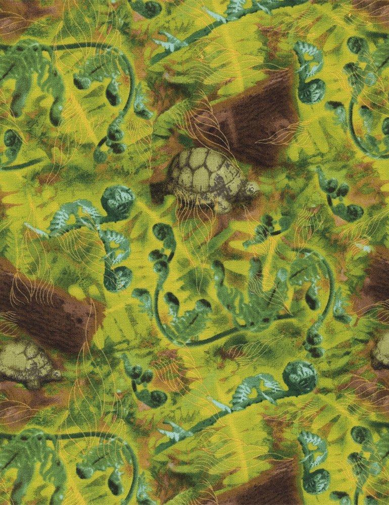 Wildflower Fern & Turtle Print