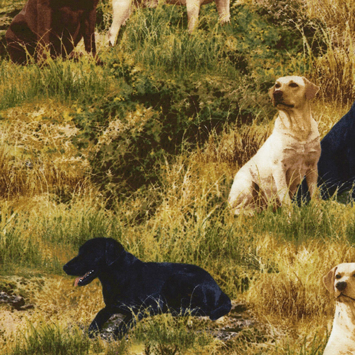 Deep in the Woods C6685 Grass - Dogs