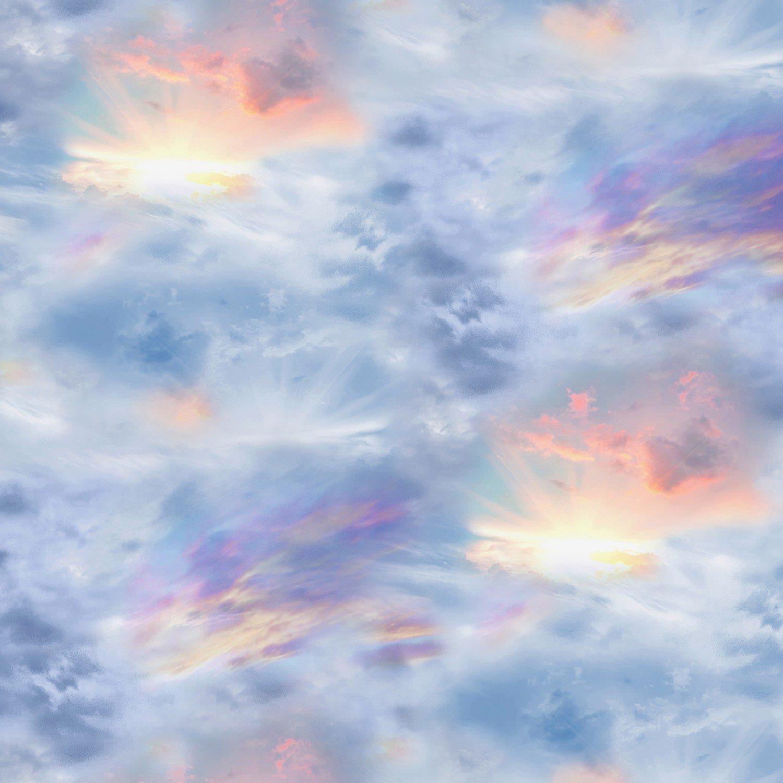 Timeless Treasures Nature Multi - Sky