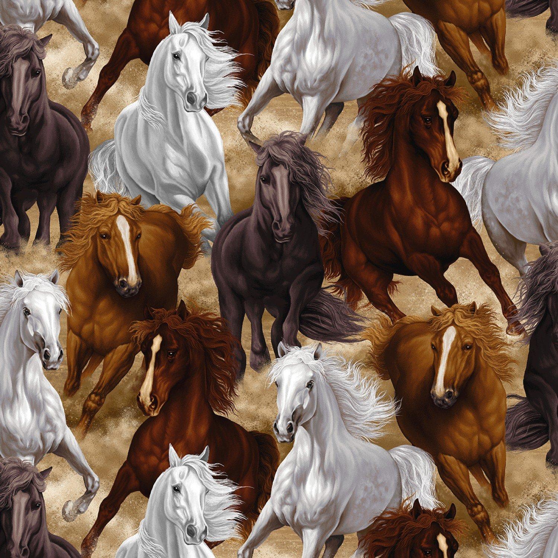 TT-Horse C7776 Multi - Wild Horses