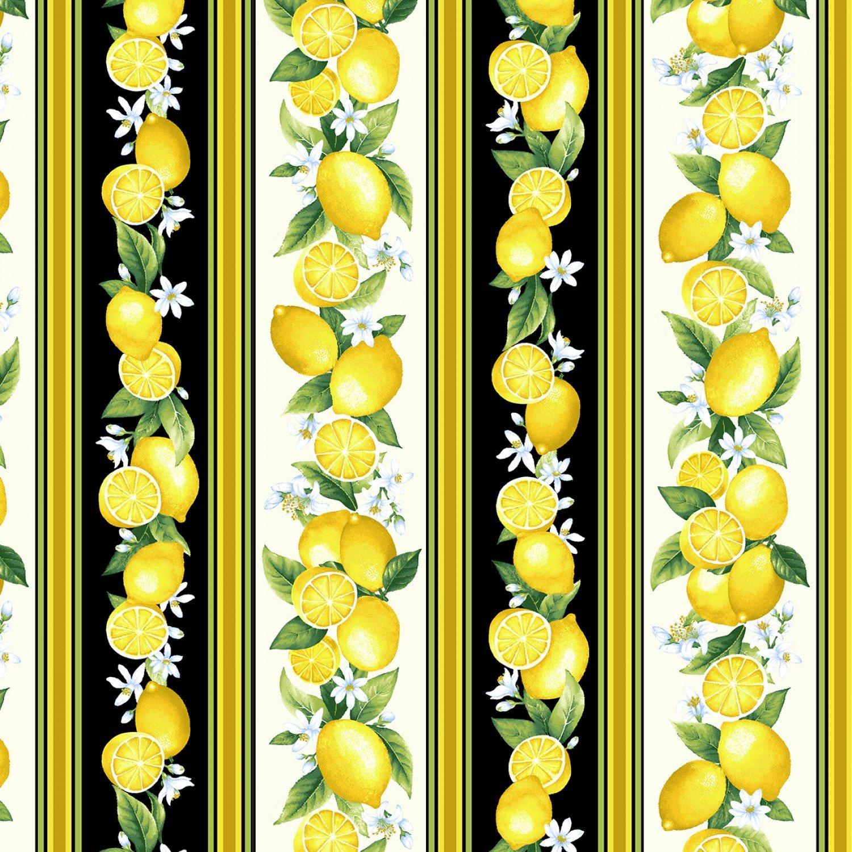 Timeless Treasures Splash of Lemon Border Print - Black