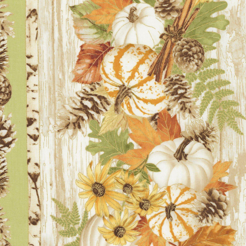 Harvest Sage - Pumpkin & Flower Border Stripe CM6851