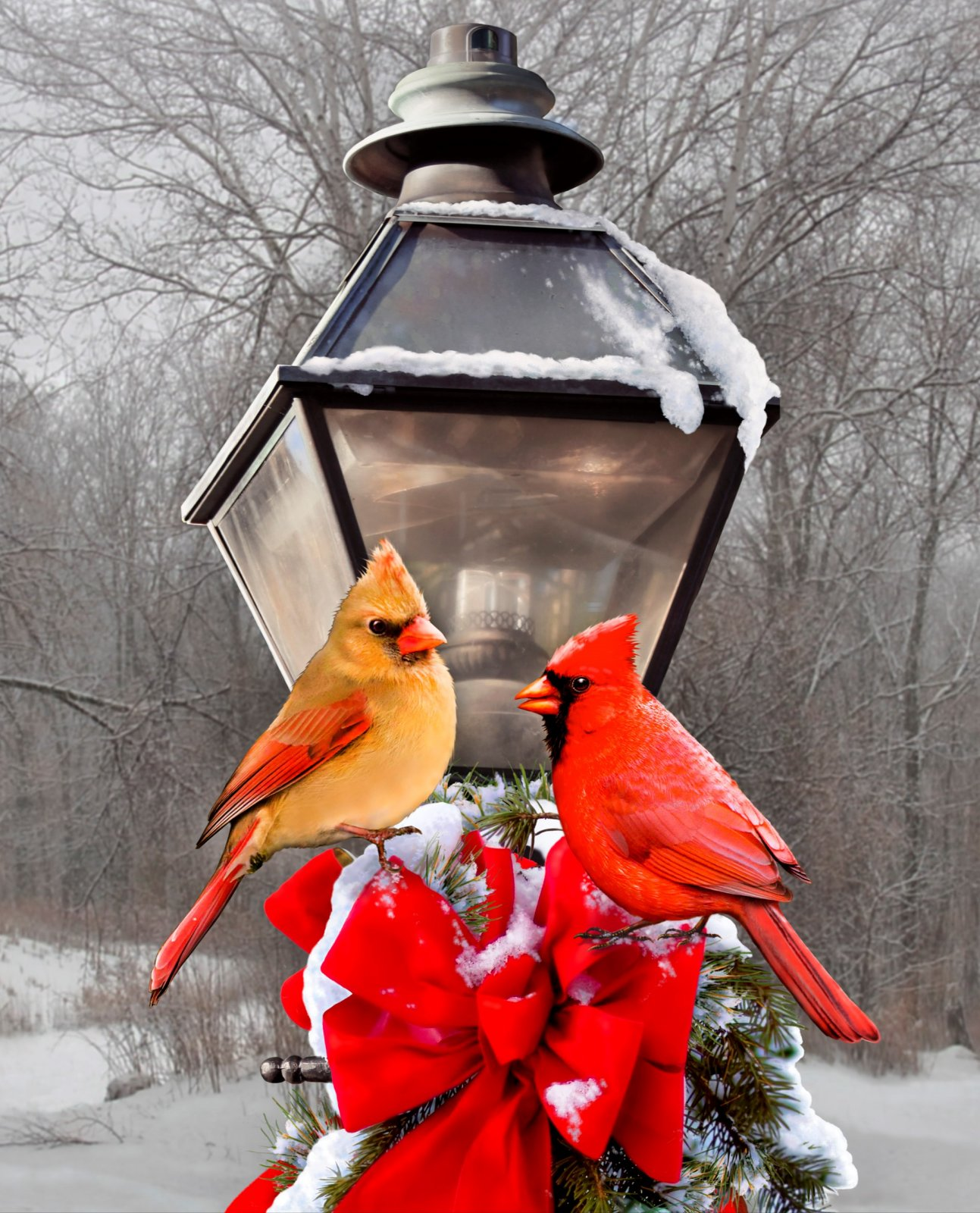 Cardinals and Street Lamps Quilt Panel by David Textiles