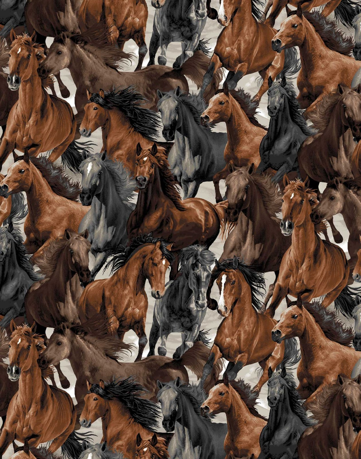 OASIS- Horse Play Packed Horses Brown/Black