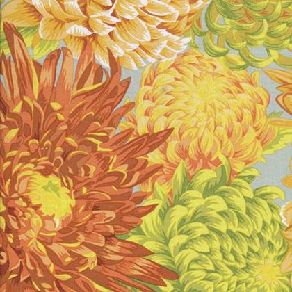PJ41.YELLO Japanese Chrysanthemum - Yellow