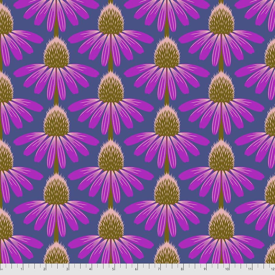 Love Always, AM - Echinacea - Haute