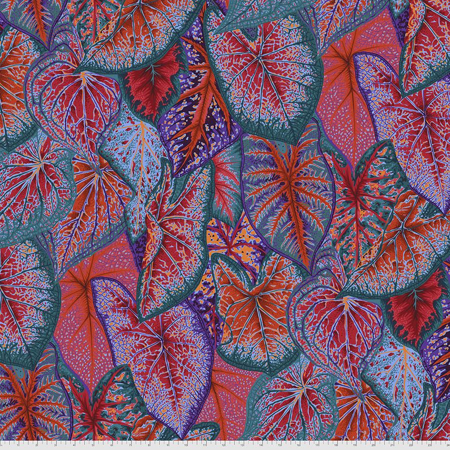 Caladiums - Red