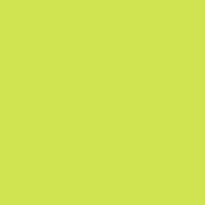 Designer Essentials-Tula Pink Solids-Limeade