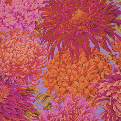Japanese Chrysanthemum - Pink