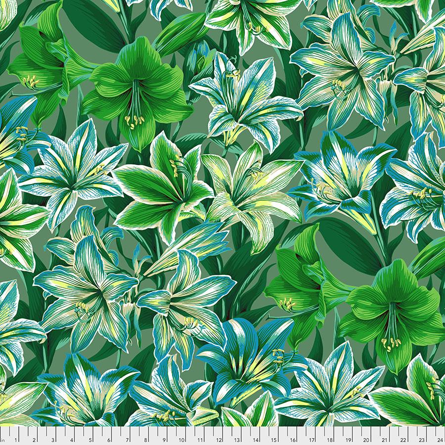 Amaryllis - Green