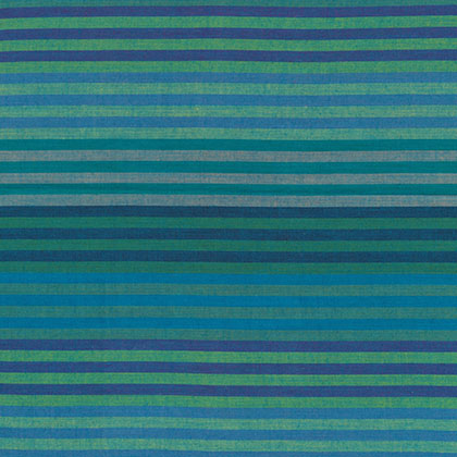 Caterpillar Stripe Blue