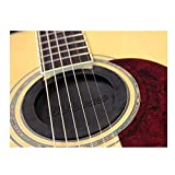 Feedback Buster Acoustic Guitar Sound Hole Block
