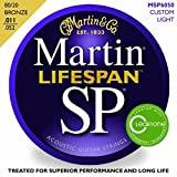 Martin MSP6050 SP lifespan custom light