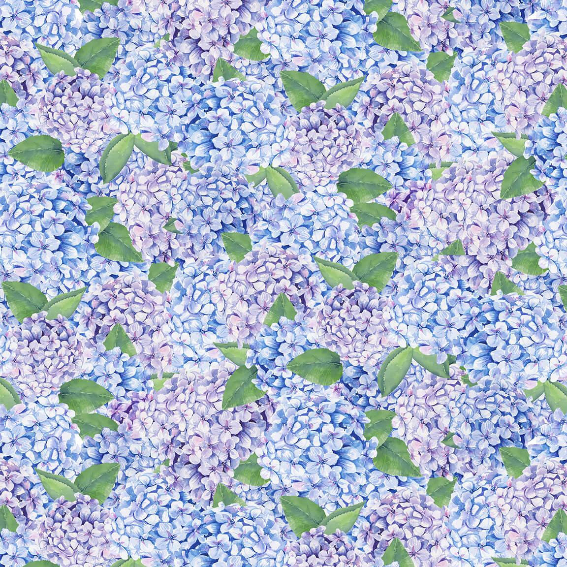 1504-11 hydrangea