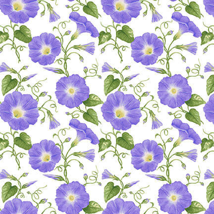 Morning Glory Fat Quarter Hydrangea Birdsong Collection by Henry Glass Fabrics